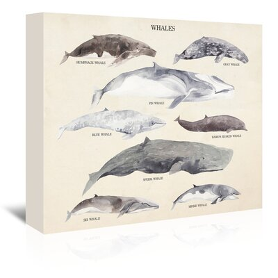 Americanflat Whales Graphic Art Wrapped on Canvas