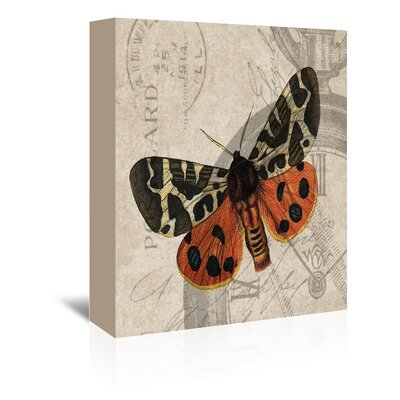 Americanflat Flying Butterfly Graphic Art Wrapped on Canvas