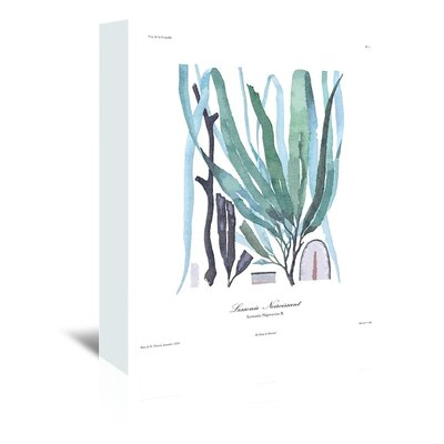Americanflat French Kelp Art Print Wrapped on Canvas
