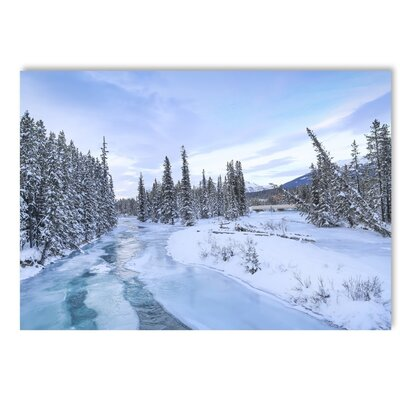 Americanflat Frozen Forest Photographic Print on Wrapped Canvas