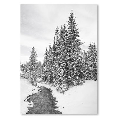 Americanflat Snow Forest 2015 Photographic Print on Wrapped Canvas