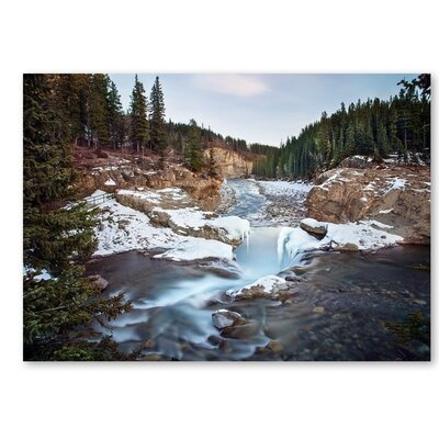 Americanflat 'Forest' by Lina Kremsdorf Photographic Print on Wrapped Canvas