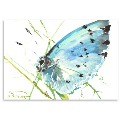 Americanflat 'Holly Blue Butterfly' by Suren Nersisyan Painting Print on Wrapped Canvas