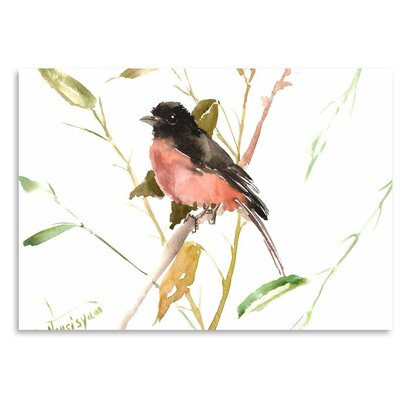 Americanflat 'Eastern Towhee Bird' by Suren Nersisyan Graphic Art on Wrapped Canvas