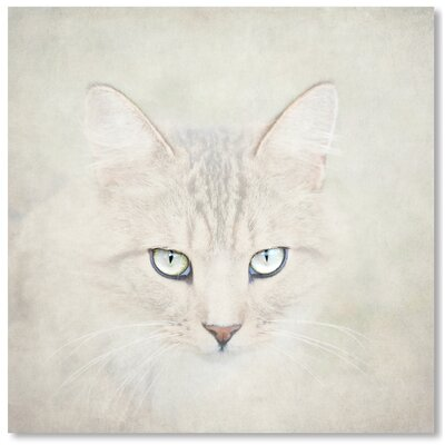 Americanflat Cat' by Lina Kremsdorf Graphic Art Wrapped on Canvas