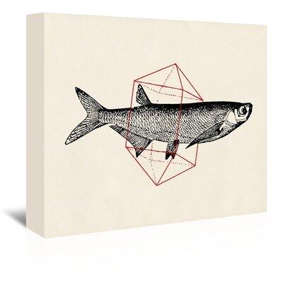 Americanflat 'Fish in Geometrics Li' by Florent Bodart Graphic Art Wrapped on Canvas