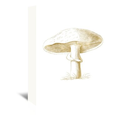 Americanflat 'Mushroom' by Amy Brinkman Graphic Art Wrapped on Canvas in White
