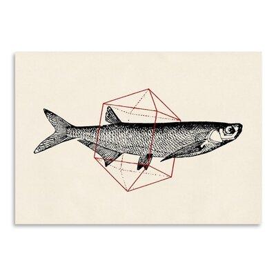 Americanflat 'Fish in Geometrics' by Florent Bodart Graphic Art