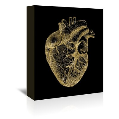 Americanflat 'Heart Anatomical Gold on Black' by Amy Brinkman Graphic Art Wrapped on Canvas