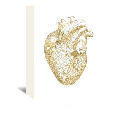 Americanflat 'Heart Anatomical Gold on White' by Amy Brinkman Graphic Art Wrapped on Canvas