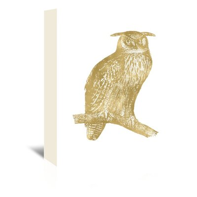 Americanflat 'Owl Great Horned' by Amy Brinkman Graphic Art Wrapped on Canvas