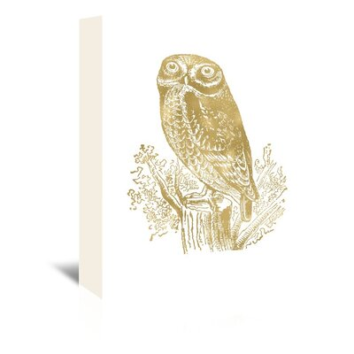 Americanflat 'Owl Rock' by Amy Brinkman Graphic Art Wrapped on Canvas in White