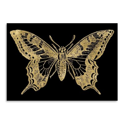 Americanflat 'Butterfly 2 Gold on Black' by Amy Brinkman Graphic Art