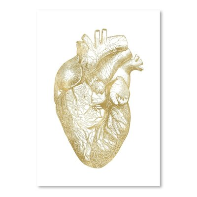Americanflat 'Heart Anatomical Gold on White' by Amy Brinkman Graphic Art