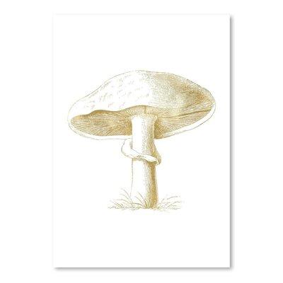 Americanflat 'Mushroom' by Amy Brinkman Graphic Art