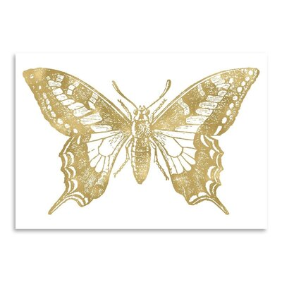 Americanflat 'Butterfly 2' by Amy Brinkman Graphic Art