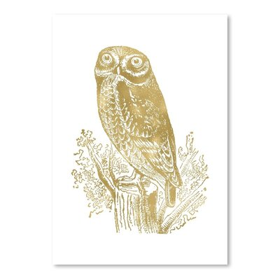 Americanflat 'Owl Rock' by Amy Brinkman Graphic Art in White
