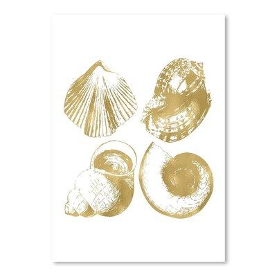 Americanflat 'Seashell Quad' by Amy Brinkman Graphic Art