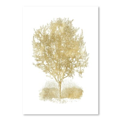 Americanflat 'Olive Tree' by Amy Brinkman Graphic Art in White