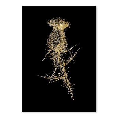 Americanflat 'Thistle 1 Gold on Black' by Amy Brinkman Graphic Art
