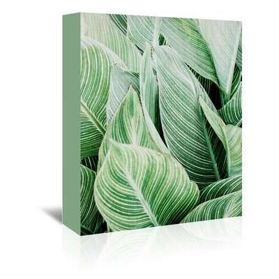 Americanflat 'Tropical Leaves' by Lila and Lola Photographic Print Wrapped on Canvas