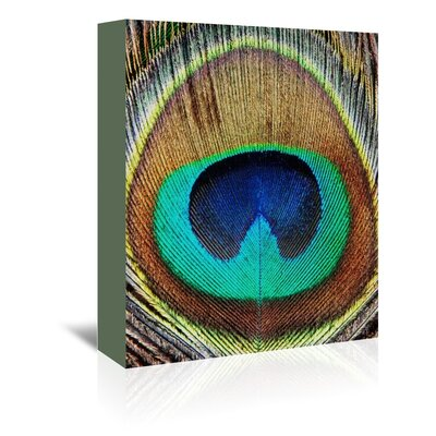 Americanflat 'Peacock Feather' by Lila and Lola Graphic Art Wrapped on Canvas
