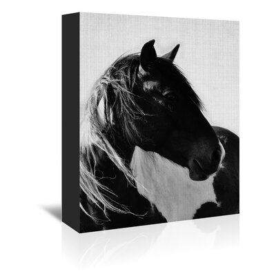 Americanflat 'Wild Horses 2' by Lila and Lola Photographic Print Wrapped on Canvas