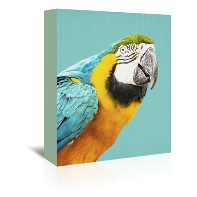 Americanflat 'Tropical Parrot' by Lila and Lola Photographic Print Wrapped on Canvas