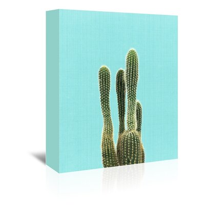 Americanflat 'Cactus on Blue' by Lila and Lola Photographic Print Wrapped on Canvas