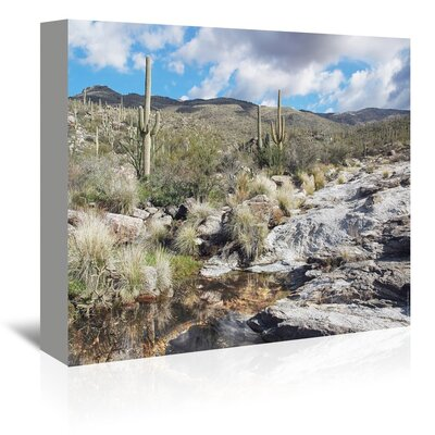 Americanflat 'Desert Pool Oasis' by Murray Bolesta Photographic Print Wrapped on Canvas