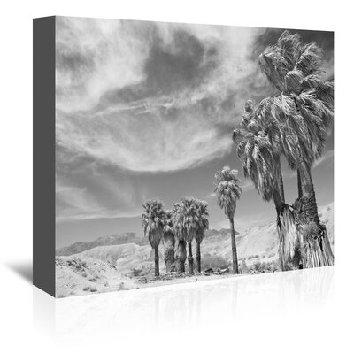Americanflat 'Anza Borrego 2' by Murray Bolesta Photographic Print Wrapped on Canvas
