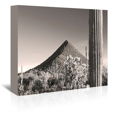 Americanflat 'Malpais Hill' by Murray Bolesta Photographic Print Wrapped on Canvas