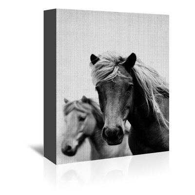 Americanflat 'Wild Horses 1' by Lila and Lola Photographic Print Wrapped on Canvas