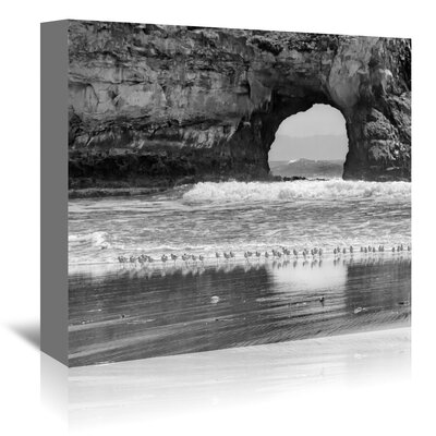 Americanflat 'Seabirds and Sea Arch' by Murray Bolesta Photographic Print Wrapped on Canvas