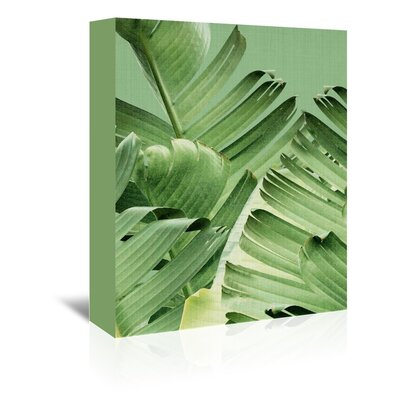 Americanflat 'Tropical Leaves 2' by Lila and Lola Photographic Print Wrapped on Canvas