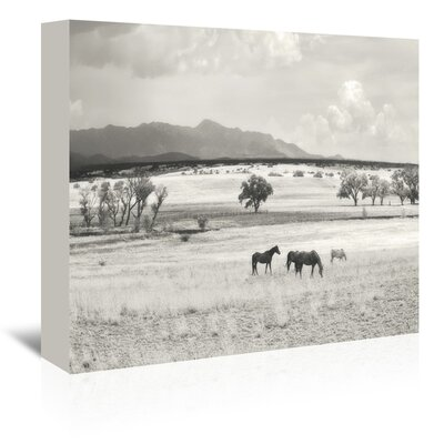 Americanflat 'Ranchland 9A' by Murray Bolesta Photographic Print Wrapped on Canvas