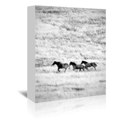 Americanflat 'Ranchland 4' by Murray Bolesta Photographic Print Wrapped on Canvas