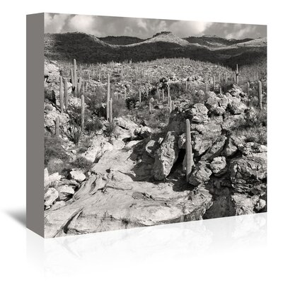 Americanflat 'Morning Desert Vista' by Murray Bolesta Photographic Print Wrapped on Canvas