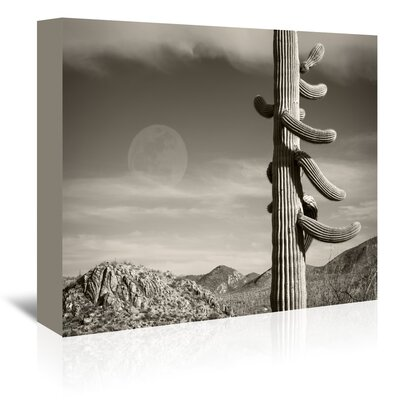 Americanflat 'Desert Moon' by Murray Bolesta Photographic Print Wrapped on Canvas