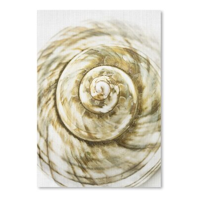 Americanflat 'Sea Shell' by Lila and Lola Graphic Art