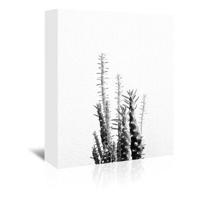 Americanflat 'Cactus Up To' by Melinda Wood Photographic Print Wrapped on Canvas