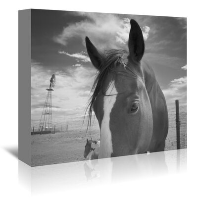 Americanflat 'Playful Pals 8' by Murray Bolesta Photographic Print Wrapped on Canvas