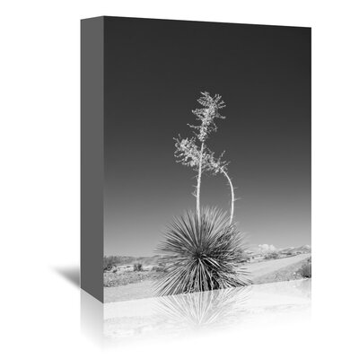 Americanflat 'Road Trip 4' by Murray Bolesta Photographic Print Wrapped on Canvas