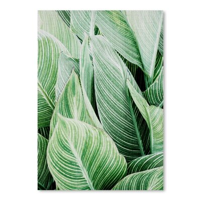 Americanflat 'Tropical Leaves' by Lila and Lola Photographic Print