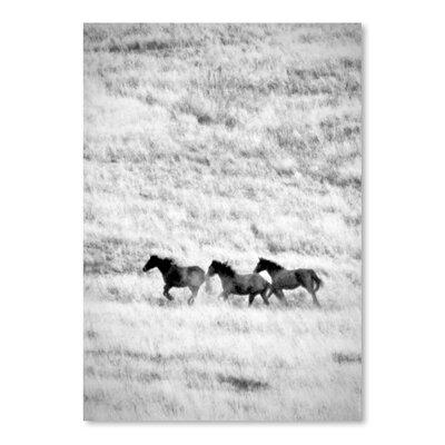 Americanflat 'Ranchland 4 Bw' by Murray Bolesta Photographic Print