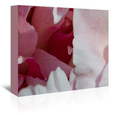 Americanflat Peony Diptych' by Rose Anne Colavito Art Print Wrapped on Canvas
