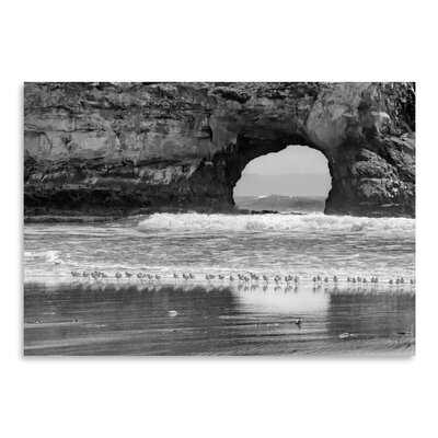 Americanflat 'Seabirds And Sea Arch' by Murray Bolesta Photographic Print