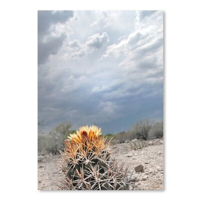 Americanflat 'Lonely Cactus Blossom' by Murray Bolesta Photographic Print