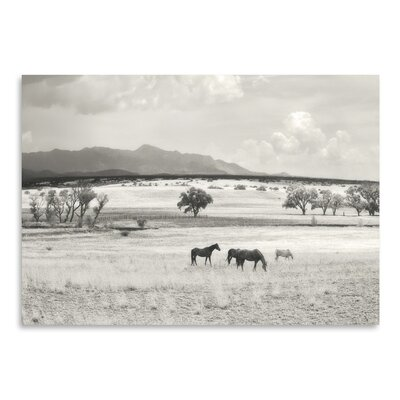 Americanflat 'Ranchland 9A' by Murray Bolesta Photographic Print