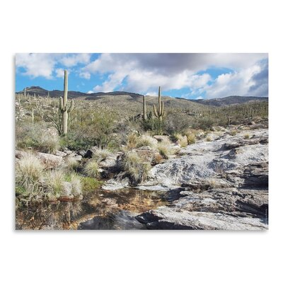 Americanflat 'Desert Pool Oasis' by Murray Bolesta Photographic Print